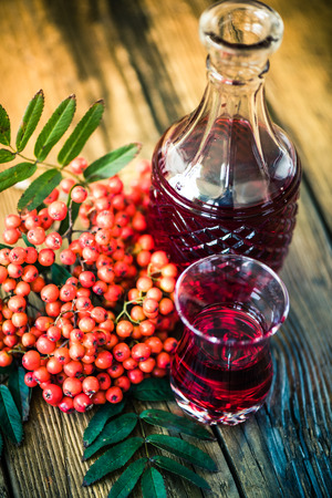 rowanberry: Rowanberry tincture vodka on wooden table with ashberry fruits