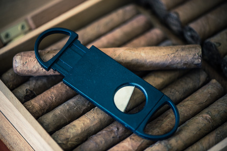 box cutter: ciggar cutter and cigars in humidor wooden box