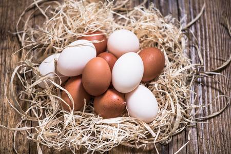 chicken and duck free range eggs in straw nest, farming