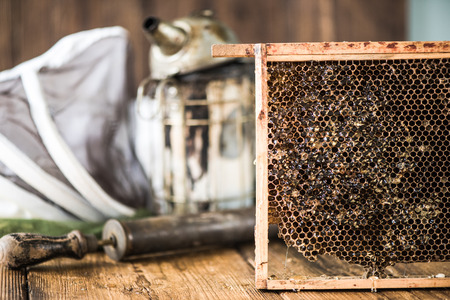 beekeeping: Beekeeping, tools and equipment. Agriculture and farming industry