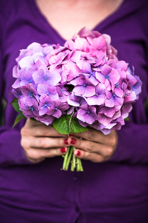 woman hold hydrangea flower bunch agains body Stock Photo