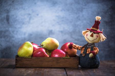 funny scarecrow show autumn harvest fruits