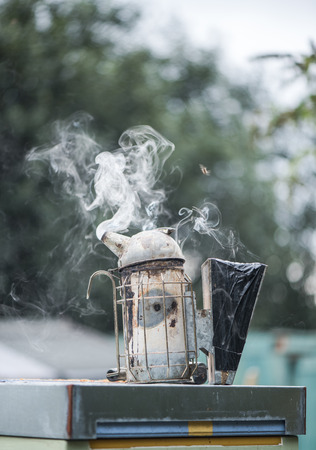 calming: Smoker used for calming bees at apiary