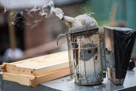 apiary: Smoker used for calming bees at apiary