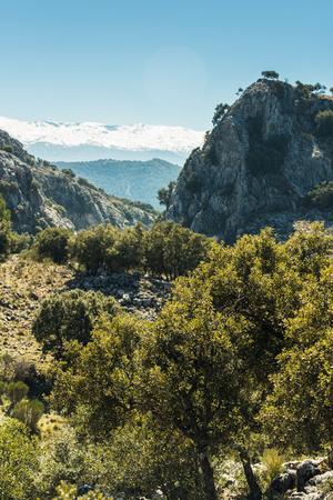 sierra nevada: Vista over Sierra Nevada National Park, Spain Stock Photo