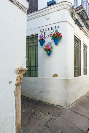 코르도바, 스페인에서 Calleja 드 라스 플로레스 꽃을 걸려와 유명한 거리