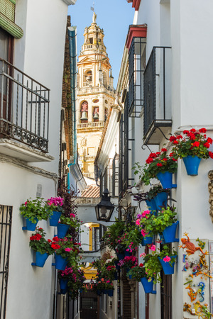 Calleja de las Flores in Cordoba, Spain famous street with hanging flowers