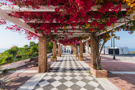 nerja: Beautiful flowers on streets in Maro near NErja,Spain. Picturesque village in Andalusia. Stock Photo