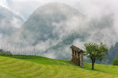 Traditional farming, hayrack in meadow with low clouds in Slovenia mountains. Stock Photo - 81575264