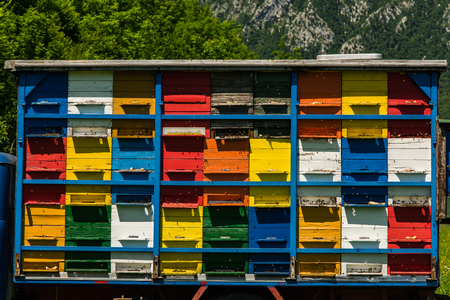 Colorfull and vibrant bee hives on old truck in Slovenia. Meadow in Julian Alps,Triglav Park, Slovenia.