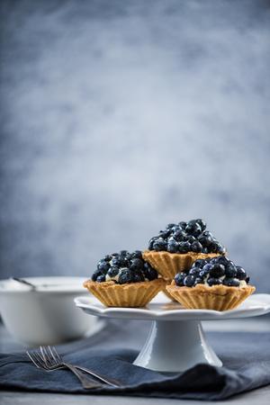 Blueberry tart mini pie on platter, copy space background Stock fotó