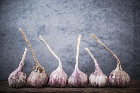 Violet garlic whole heads, copy space. Banco de Imagens