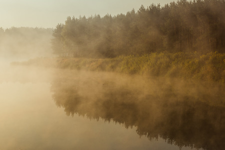 Dense fog over lake and forest in autumn season at sunrise