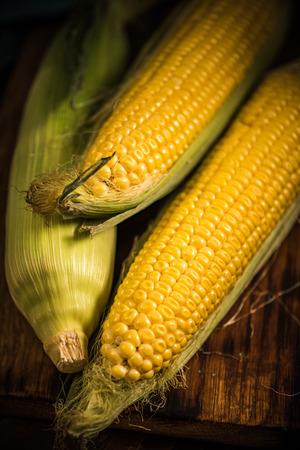 Maïskolf, herfst gezonde snack Stockfoto