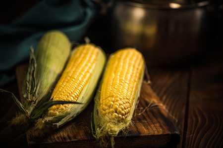 Golden corn whole cob on wooden rustic board