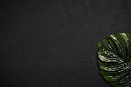 暗いコンクリートの石のスレートの上のヤシの葉