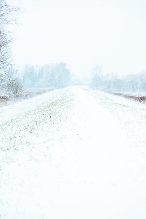 Minimal winter scene outdoor in countryside.