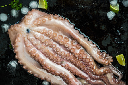 Whole seafood octopus with ice and lime.