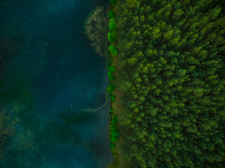 Aerial top down view over forest and lake.