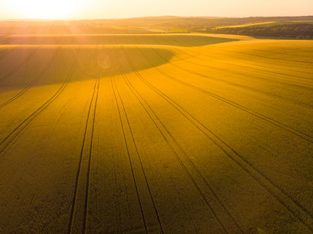 Sunrise oover rolling hills in Moravia, aerial drone view. Imagens