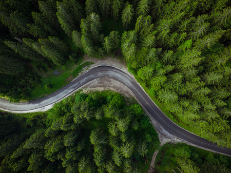 Winding road in forest, aerial drone view, road trip concept.