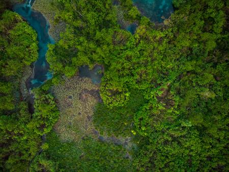 Vista aérea de arriba hacia abajo sobre la Reserva Zelenci, Eslovenia.