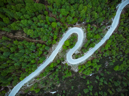 Curved road trough forest , birds eye drone aerial view.