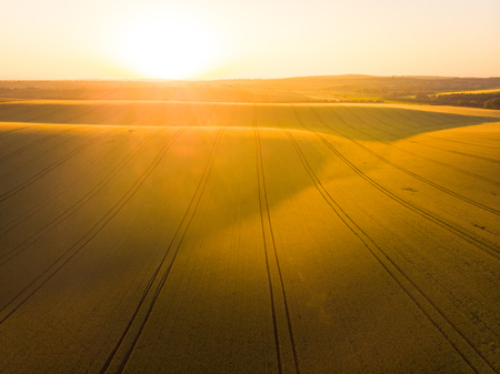 Aerial drone view over farmlands fields in Moravia region, Czech Republic. Stock Photo
