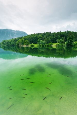 Bohinj Lake, Slovenia top destination.