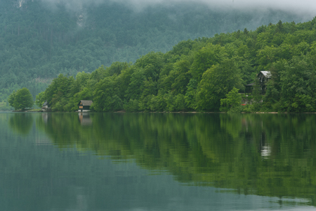 Trees reflection in waters of Bohinj Lake in Slovenia. Banco de Imagens