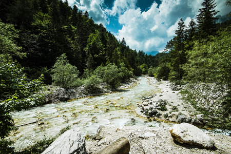 Mountains river flowing trough forest in Alps.