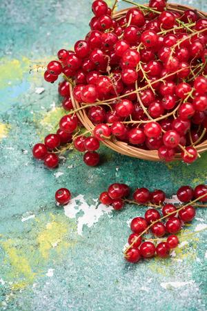Basket with fresh ripe redcurrant. Stockfoto