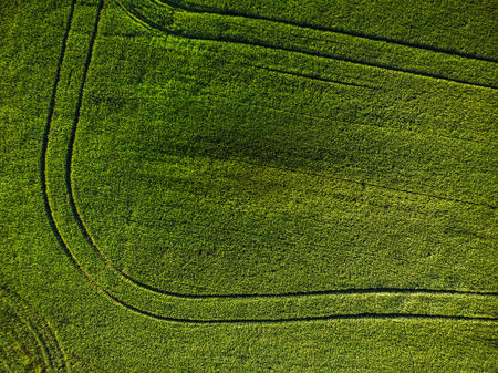 Top down aerial view of farm fields. Фото со стока