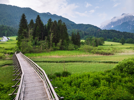 Wooden bridge or footpath in natural reserve outdoors. Standard-Bild - 104544155