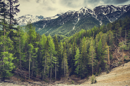 High mountains with snow and wild forest Stock Photo