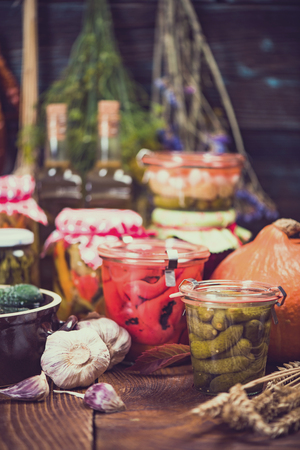 Marinated and Pickled organic vegetables,fermented food Imagens