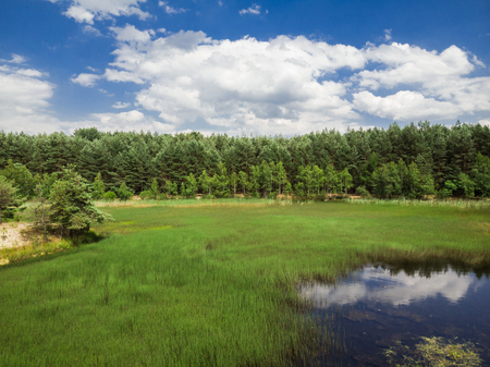 Beautiful summer landscape, lake,forest and clouds Banco de Imagens - 106235099