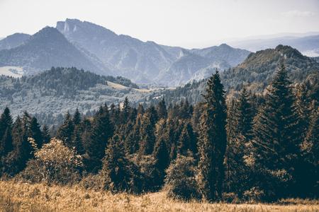 Summer time in Polish Pieniny Mountains Banco de Imagens