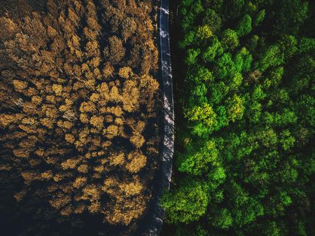 La moitié de l'automne la moitié de la forêt d'été vue de haut en bas