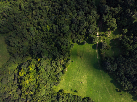 Green forest and hills in Pieniny, Poland. Aerial drone view.