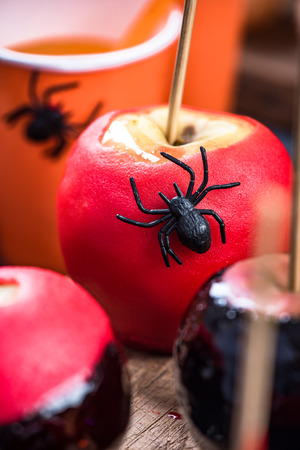 Red candy apple with spider, Halloween food.