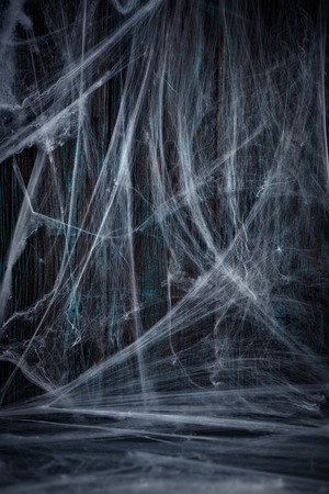 Halloween wooden background with spider net.