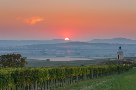 Sunrise over vineyards and coutryside in Moravia.
