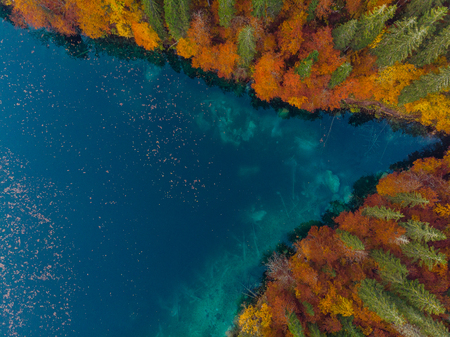 Natural shape, lake edge with autum forest. Aerial drone view.