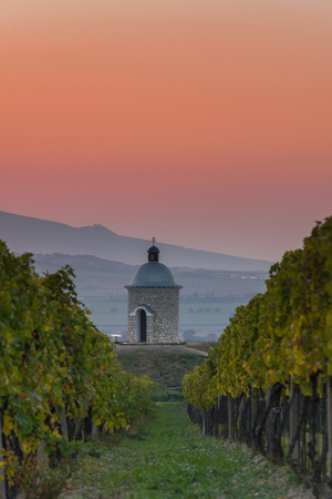 Chapel at hill in vineyards and countryside. Imagens