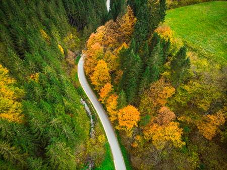 Colorful forest and curvy road, aerial drone view from above. Stock Photo
