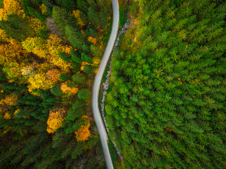 Top down drone view on winding road trough autumn forest. Stock Photo