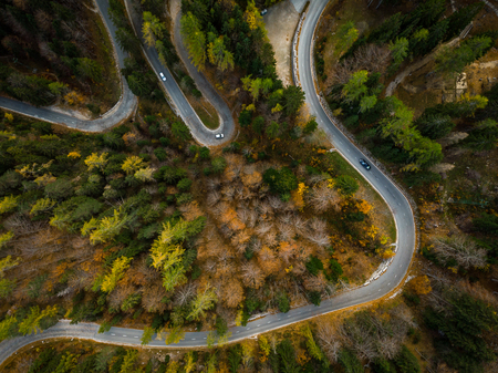 Curvy road trough atumn forest,aerial top down view. 版權商用圖片