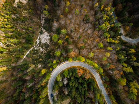 Curvy road trough atumn forest,aerial top down view. Фото со стока