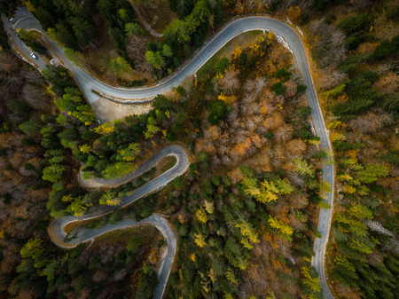 Curvy road trough atumn forest,aerial top down view. Stok Fotoğraf